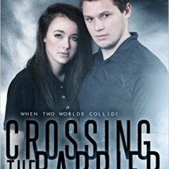 Crossing the Barrier by Martine Lewis
